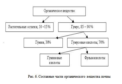 Схема состава растений
